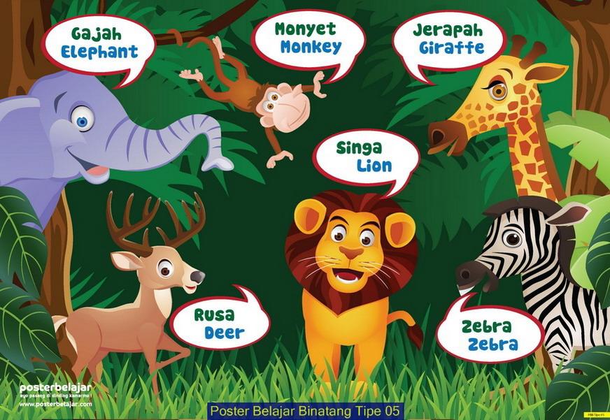 Poster Belajar Binatang Tipe 05 Creative Store 24