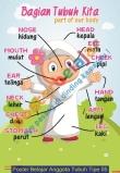 Poster Belajar Anggota Tubuh Tipe 05